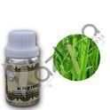 KAZIMA Calamus Essential Oil