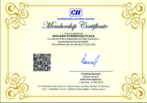 Shaleen Pharmaceuticals - Manufacturer from Industrial Area Phase 1
