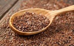 Flax Seeds Testing Services