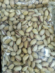 Cucummber Seeds