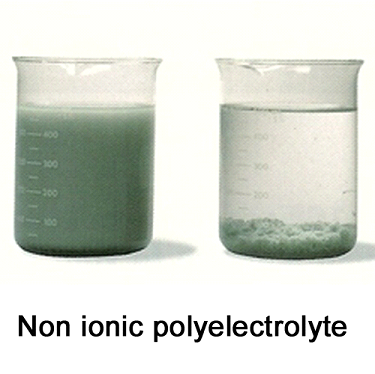 Etp Chemicals Non Ionic Polyelectrolyte Manufacturer