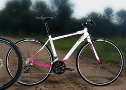 Shaper 300 Lady Bicycle
