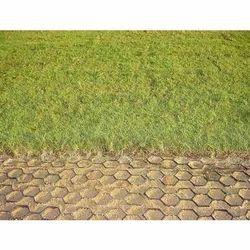 Grass Paver RCC