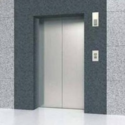 Automatic Doors Passenger Lifts