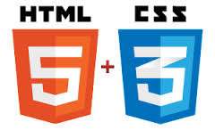 HTML and CSS Training Institute