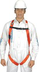 Lifegear Harness