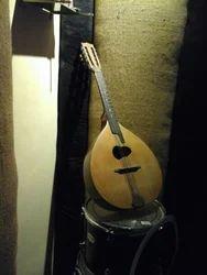 Mandolin at Best Price in India