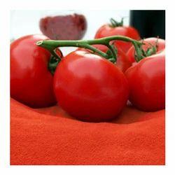 Spray Dried Tomato Powder, Packaging: Plastic Bag