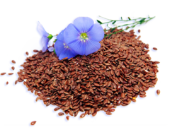 Grounded Flax seed