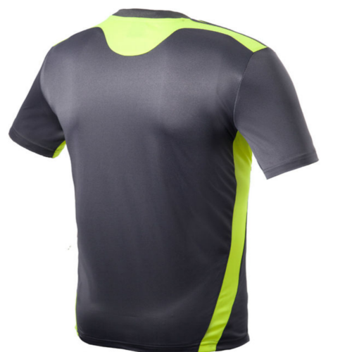 Colour Sports T Shirt