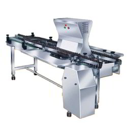 Tilting Type Inspection System