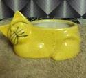 Yellow Cat Bonsai Pots, Size: 6 Inch