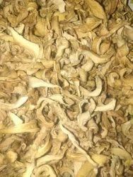 Dry Oester Mushrooms