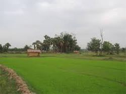 Land Conversion for Farm House