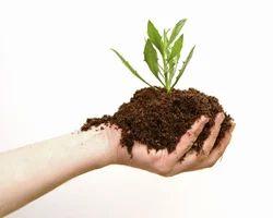 Herbal Bio Pesticide