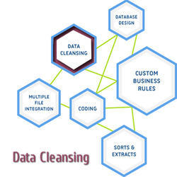Data Cleansing & Scrubbing