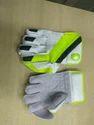 Cricket Wicket Keeping Gloves