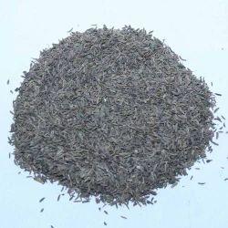 Shah Jeera Caraway seeds, Packaging: Packet