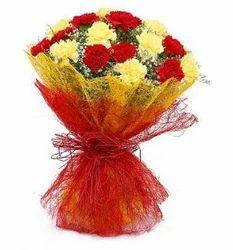 Blooming Carnation Flower