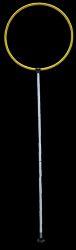Ringed Slalom Pole