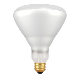 Attractive Outdoor Light Bulb