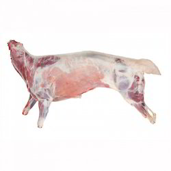 Mutton Carcass