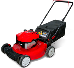 Lawn Petrol Engine Driven Mover