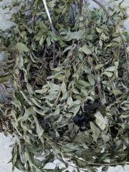 Dry Curry Leaves Kadi Patta, Packaging: Plastic Bag Or Polythene