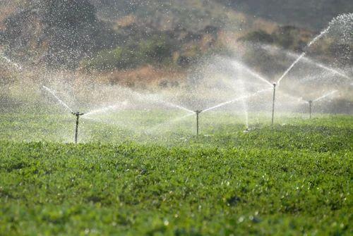 Image result for Sprinkler Irrigation System