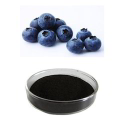Blueberry Extarct