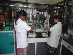 Pesticide Residue Testing Services