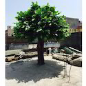 Artificial Banyan Tree (Kalp, Bargad Tree)