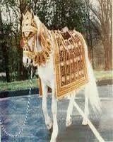 Groom Horse Rental Service
