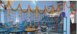 Semi Automatic Fruit Washing Plant