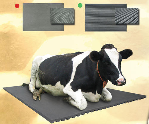 Cow Mat At Rs 2200 Piece Cow Mat Id 12445013248