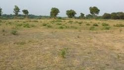 Industrial  Land Dealing Services