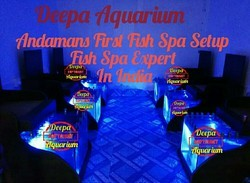 Deepa Aquarium Dr Fish Spa Setup 4 Single Tank, 4 units .