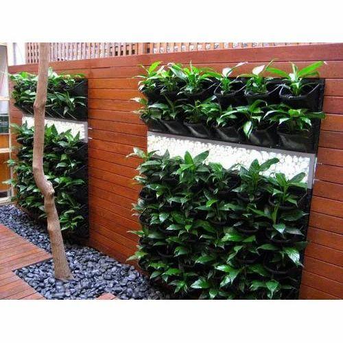 Beautiful Vertical Garden Ideas: Natural Vertical Garden At Rs 700 /square Feet