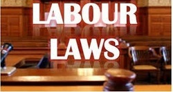 Labour Licence Or Shops And Establishment License Reg