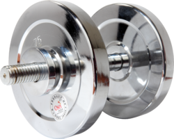 Rubber & Steel Dumbbell in silver color, Fixed weight type and 50 lbs weight