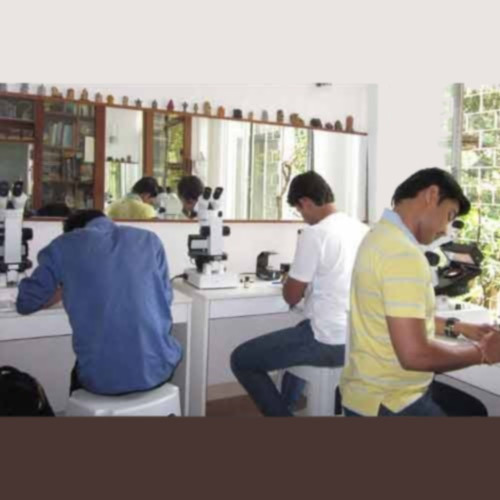 Gemology Course By Correspondence in Pune, PANGEM