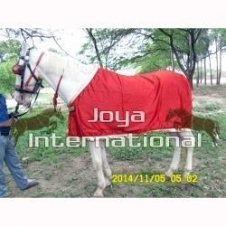Horse Show Rug