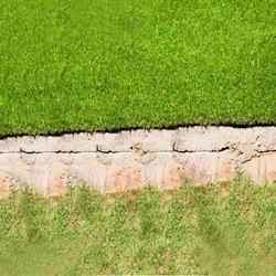 Artificial Grass - 10 MM