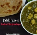 Pure Veg Foods Dishes