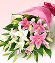 White Pink Lily