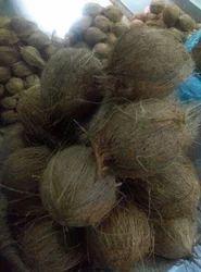 Malai Husked Coconut