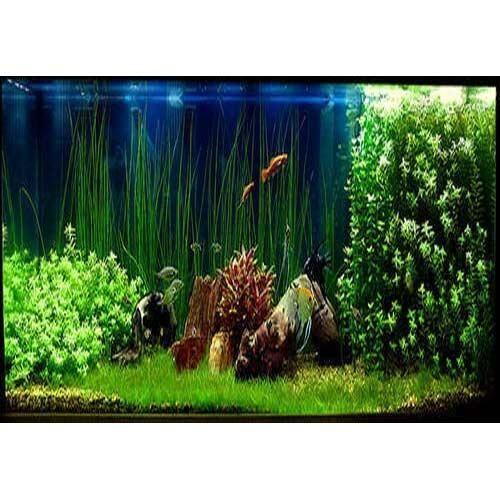 Aquarium Artificial Plant