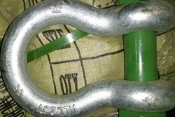 Bow Shackle (Screw Pin Type )
