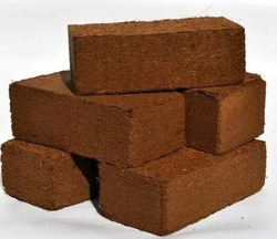 Coco Peat For Home Garden