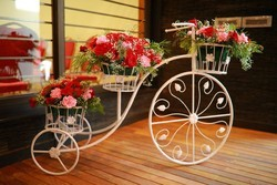 Decorative Cycle